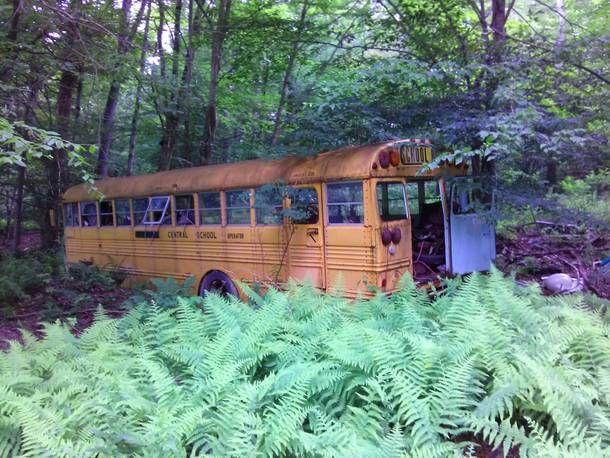 Forgotten School Bus in Potter County PA