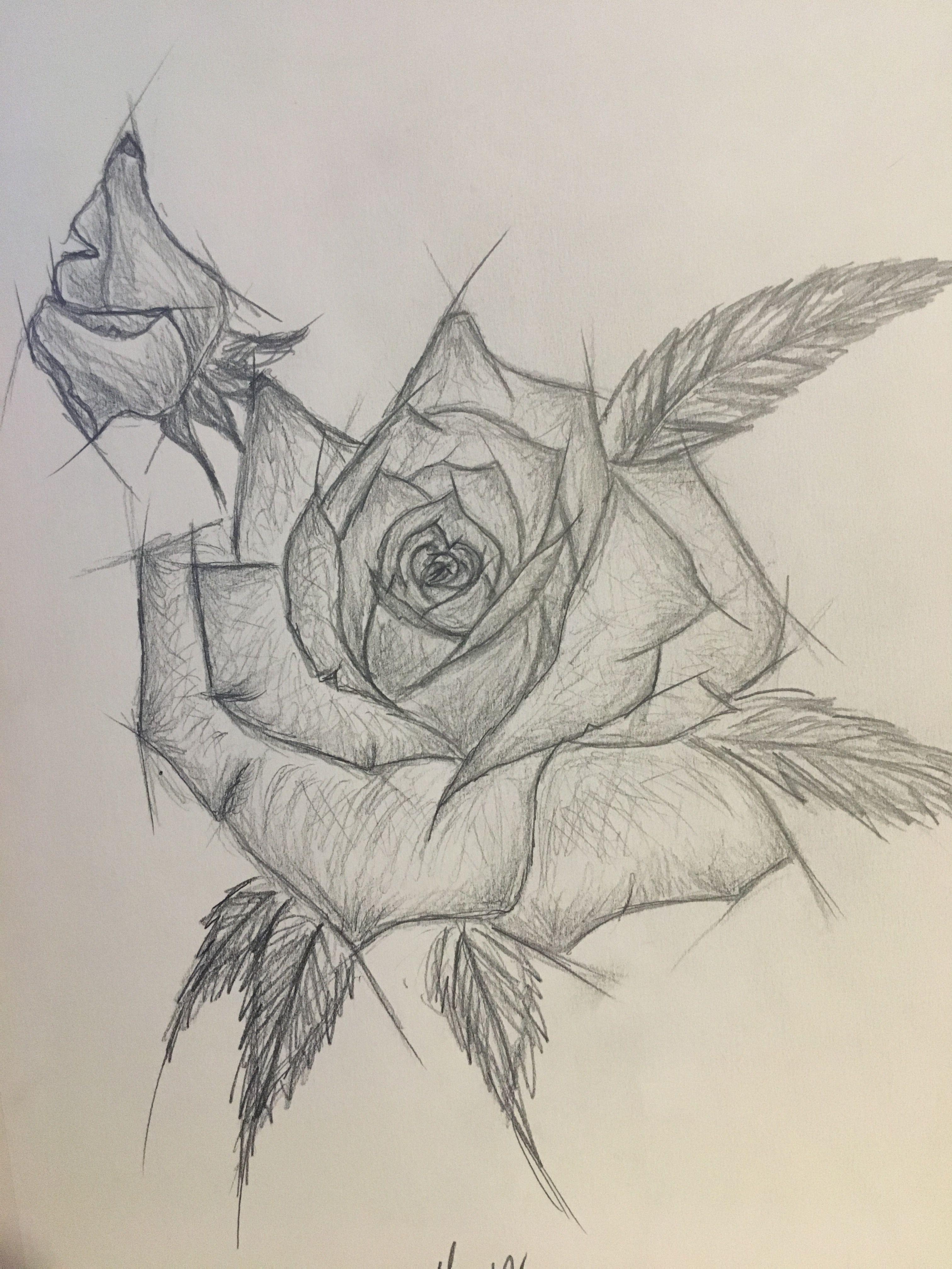 Sketchstyl Rose Tattoo Rose Art Drawing Flower