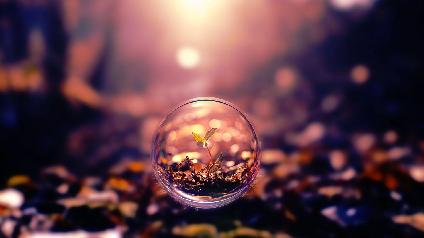 Meet The Requirements Of Your Requirements Photography Wallpaper Bubbles Wallpaper Desktop Wallpaper