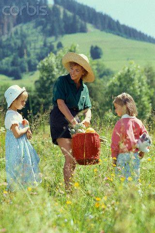Juillet, 1986. Green fleurs dans le domaine