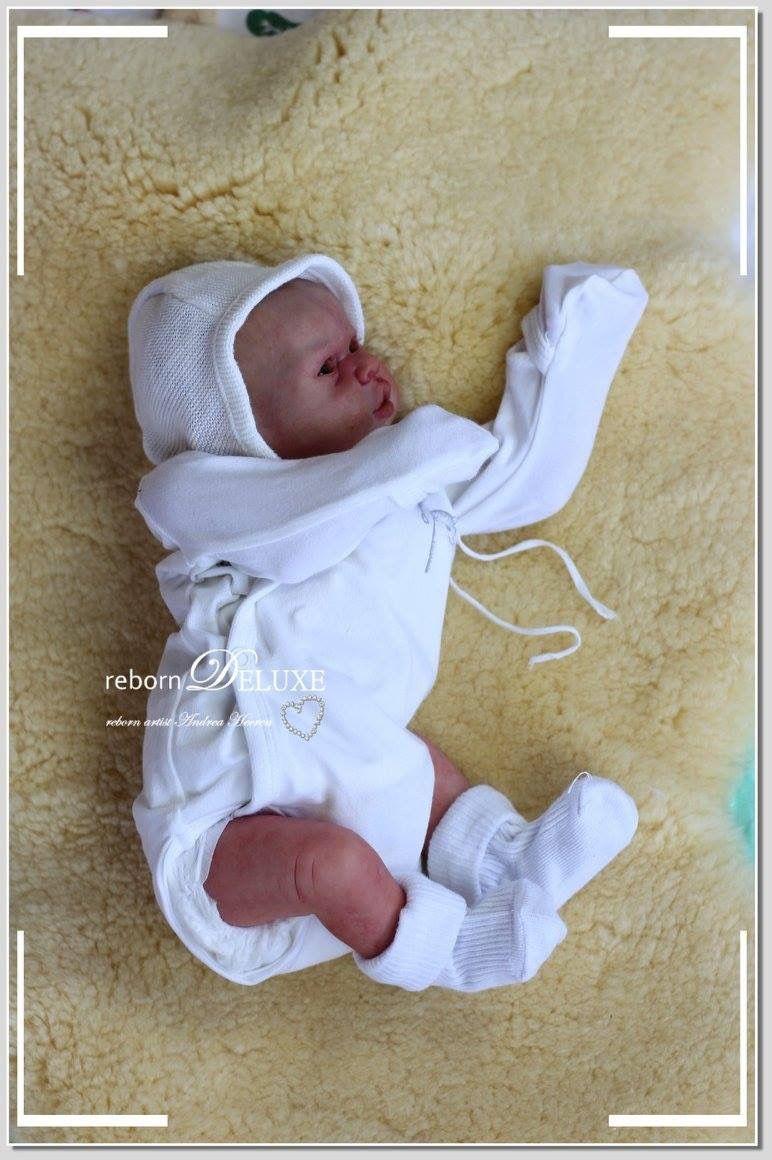 Andrea Heeren rebornDELUXE Rebornbaby Frühchen Elliot so süß mit ...