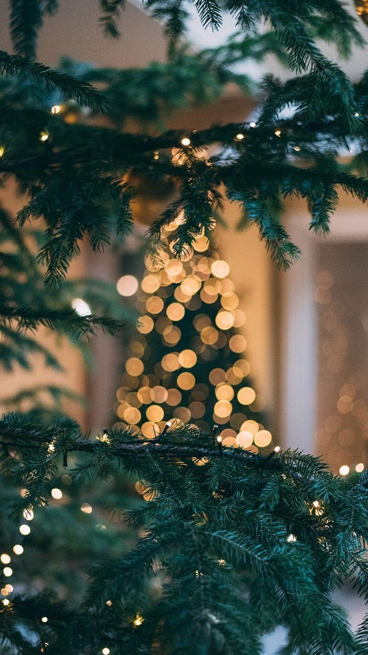 겨울 크리스마스 배경화면 네이버 블로그 크리스마스 월페이퍼 크리스마스 등불 크리스마스 배경 이미지