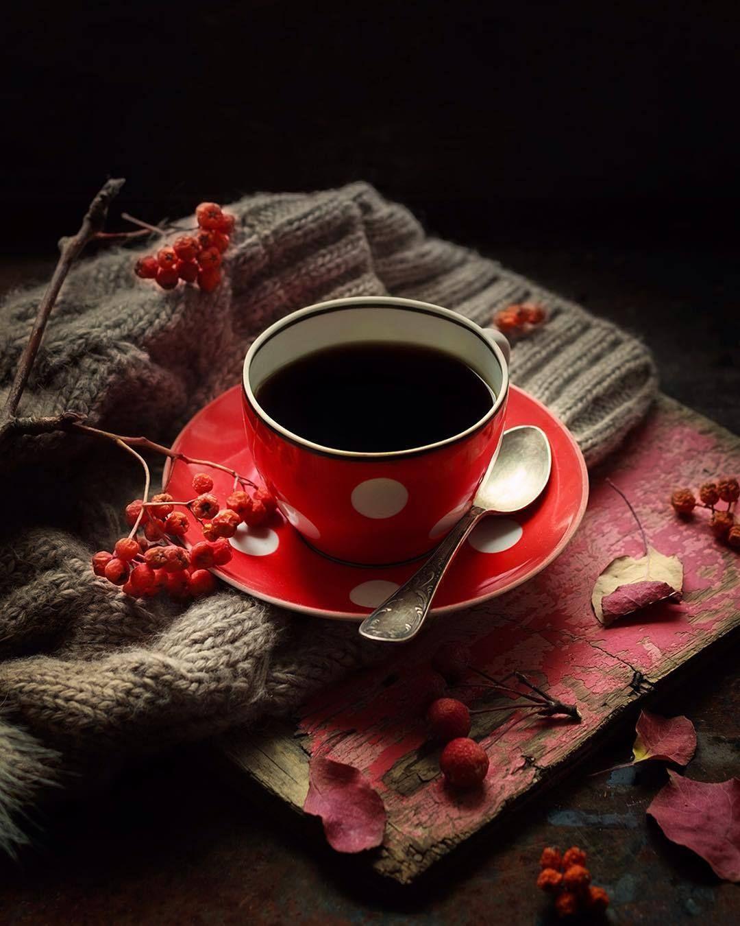 Coffee Spiced Coffee Coffee Cafe Coffee Addict