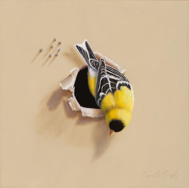 Camille Engel | Bird Paintings /Trespasser Series