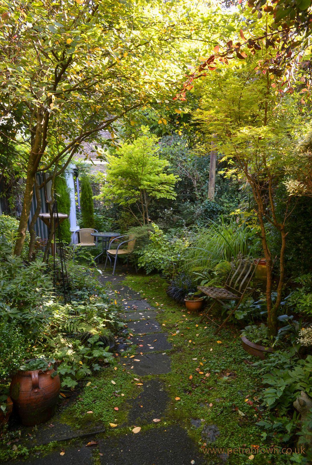 46++ Enchanted backyard ideas information