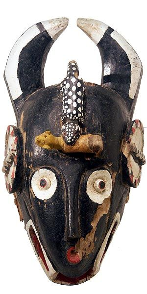 Baule bo nun amuin Mask - The Baule are one of the Akan peoples. They moved west to the Ivory Coast more than 200 years ago and adopted masking traditions from their neighbors, the Guro, Senufo and Yaure peoples. Bo nun amuin, the sacred and fearsome bushcow/antelope men's masks, kept in the bush and hidden from women and children, show the serious and powerful potential of Baule spirits.  This mask has a moveable lower jaw.