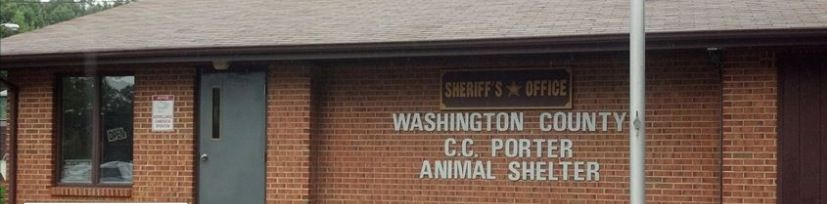 13++ Grundy county animal control ideas in 2021