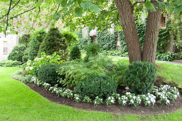 Landscaping Around Small Trees : Bed around existing trees don t like the ring of small flowers