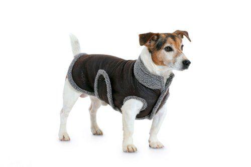 per per Cartamodello cappottino Burda cane B7752 qSUpMGLVjz