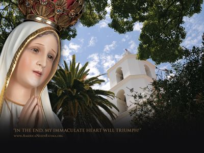 in the end my heart will triumph! the blessed virgin mary ~ heart