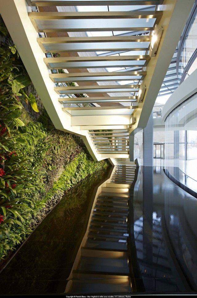 This spectacular vertical garden project for s c johnson was completed in 2010 by vertical - Wandbegrunung innen ...