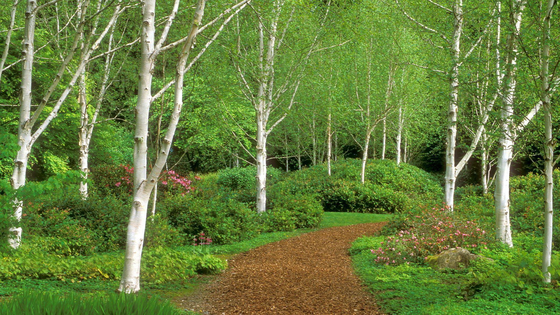 Garden Path, Bloedel Reserve, Bainbridge Island, WA   Http://imashon