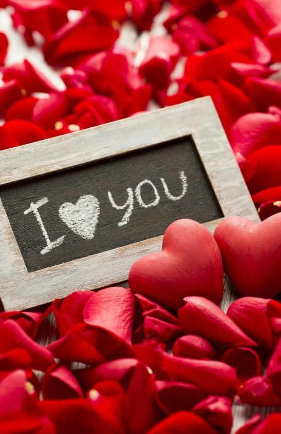 "Valentines Day Wallpapers Tumblr For Girlfriend Boyfriend Lovequotes Loveimages À¸""อกก À¸«à¸¥à¸²à¸š À¸""วามร À¸ À¸˜à¸£à¸£à¸¡à¸Šà¸²à¸•"