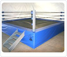 Wrestling Ring Trampoline Wrestling Rings For Sale Trampolines For Sale Trampoline Wwe Party