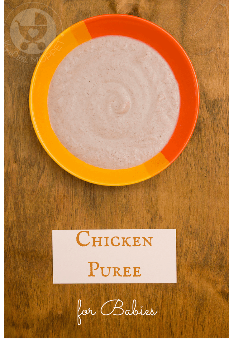 Indian chicken puree for babies indian chicken pureed recipes combine the goodness of chicken and vegetables in this indian chicken puree recipe for babies forumfinder Gallery
