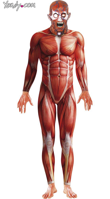 Mens Skinned Alive Anatomy Costume 5295 Yandy Halloween