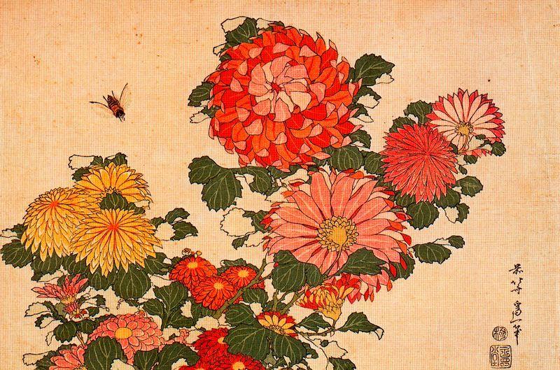Katsushika Hokusai, Chrysanthemums and yellow Hornet 1833-1834. Wood cut