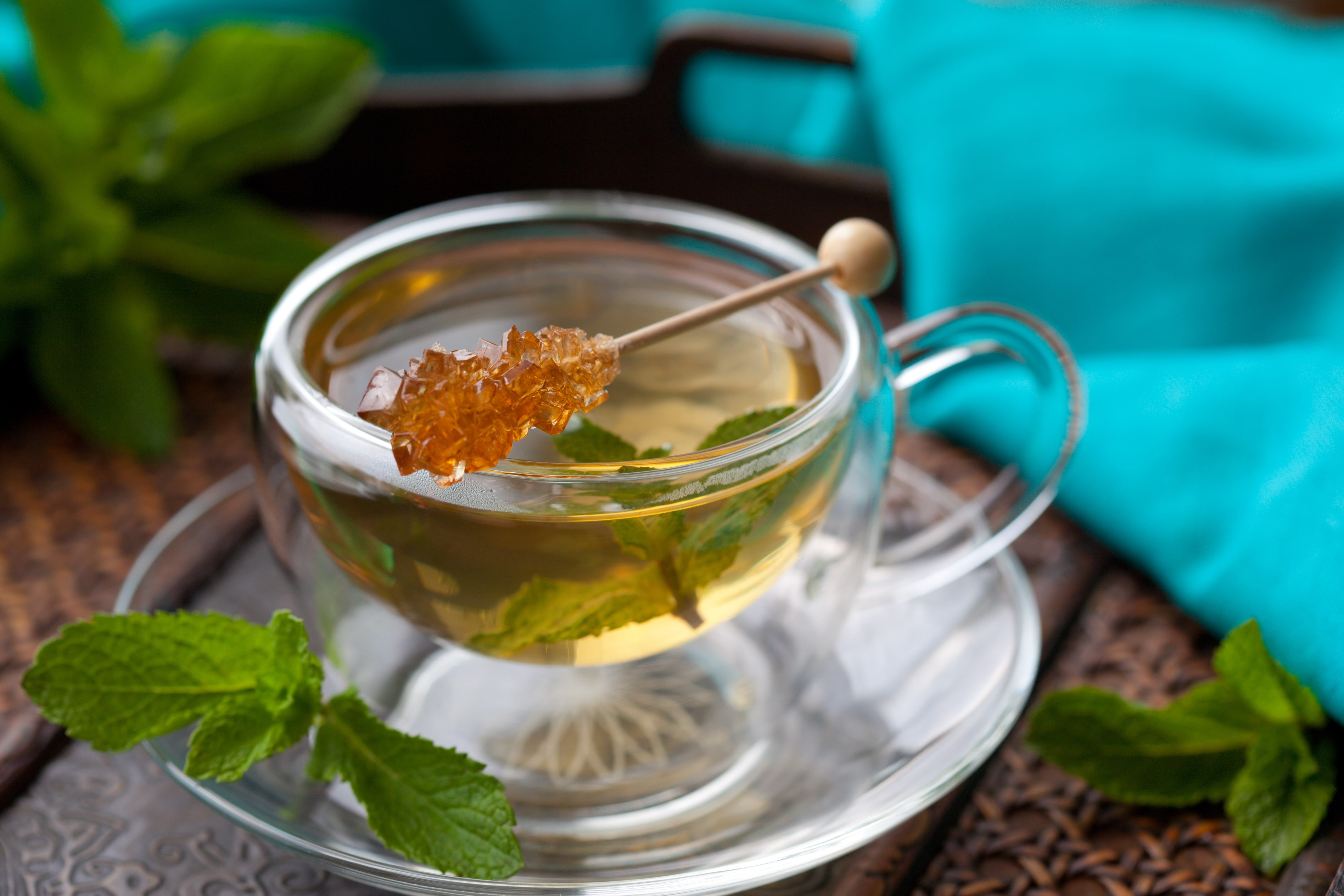 can green tea make you lose weight