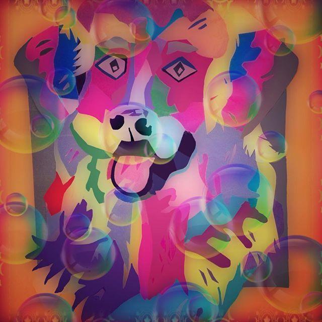 who let the dogs out.....Een papieren selfie🐾 #papier #popart #novascotiaducktollingretriever #creativepaper #artdog #tollers