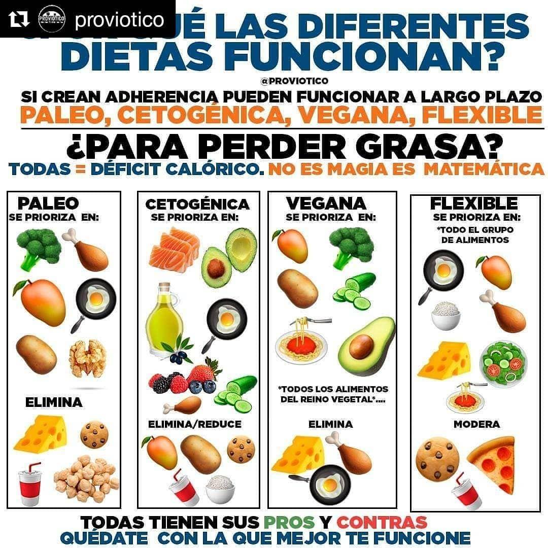 Repost Proviotico Get Repost Y No He Puesto La Dieta De La Alcachofa Pina Atun Porque Esas Fueron Inventadas Por Alguien Que In 2020 Food Fruit Cantaloupe