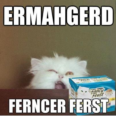 Ferncer Ferst!!!!!