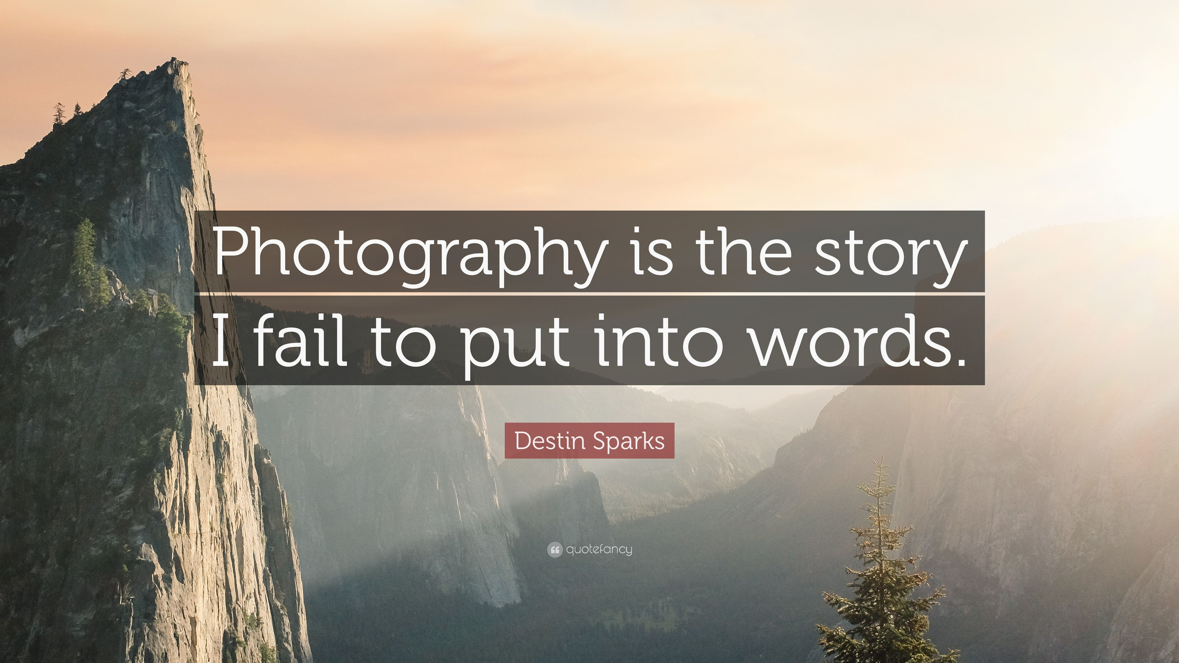 Photography Quotes  Photography Quotes Photography Is The Story
