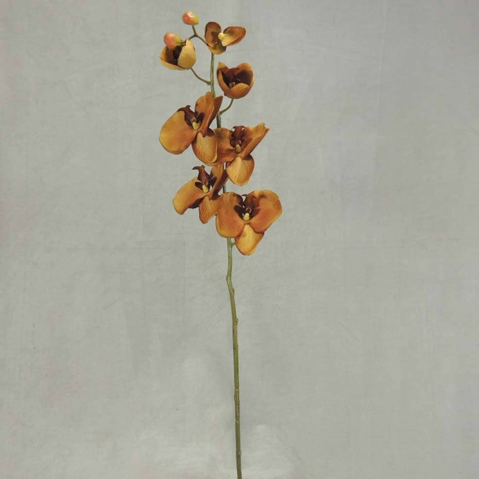 pc inch fall phalaenopsis orchid stem w blooms u bud