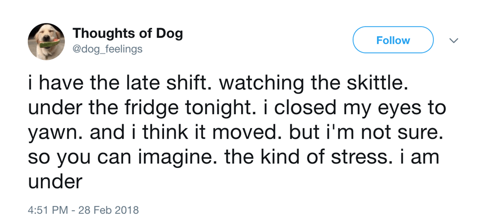 25 Amazingly Funny Tweets From 'Thoughts of Dog' You Just Have To Read