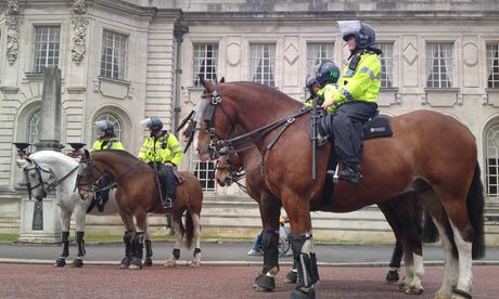 Modern Police Horses