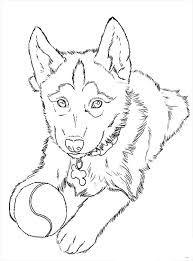 Картинки по запросу раскраски собаки | Рисунки животных ...