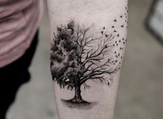 Tatouage Arbre Pin Laurier Chene Bouleau Olivier Tattoo