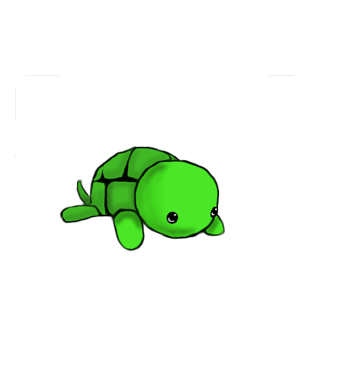 easy draw turtle - photo #4