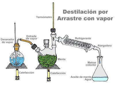 Quimica Destilacion Por Arrastre Con Vapor Aceites Caseros