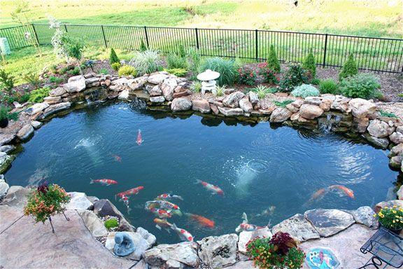 Koi Ponds Designs Above A Beautiful Shot Of A Backyard 400 x 300