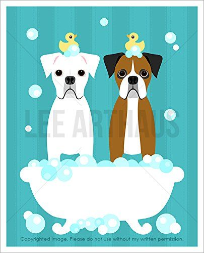 162d White And Brown Boxer Dogs In Bubble Bath Bathtub With Blue