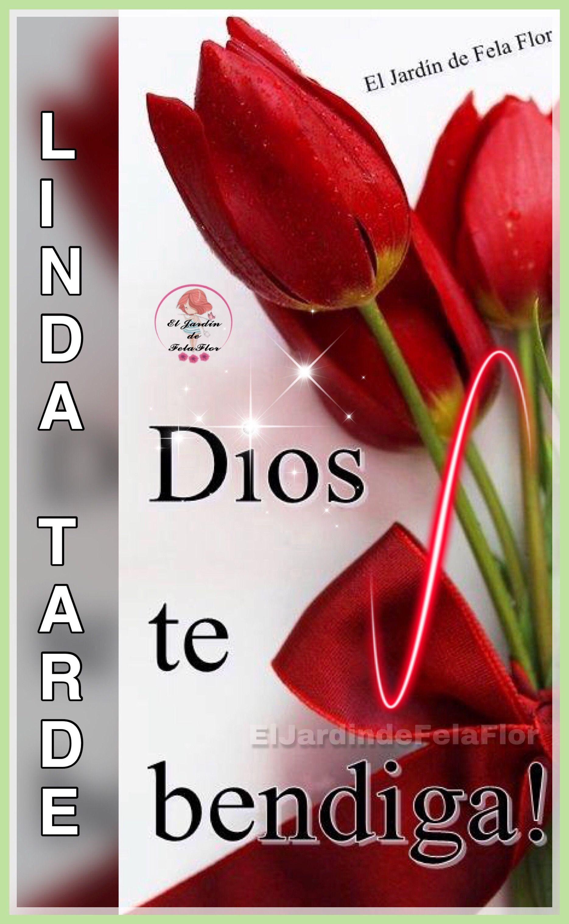 Dios Te Bendiga Linda Tarde Saludos De Buenas Tardes Tarjeta
