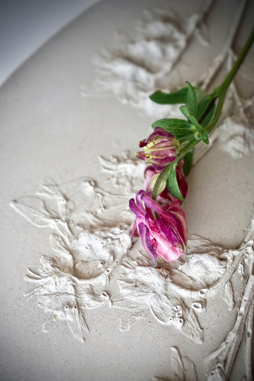 Pin On Gėlių Portretai Botanical Bas Relief Plaster Panel