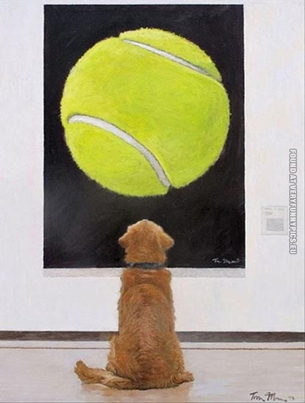 The Greatest Painting Ever Cute Animals Doggy Funny Animals