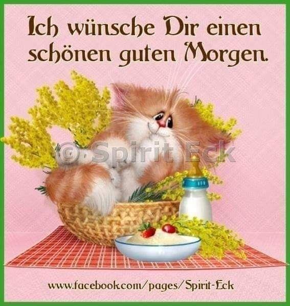 Sms Spruch Guten Morgen красивые картинки