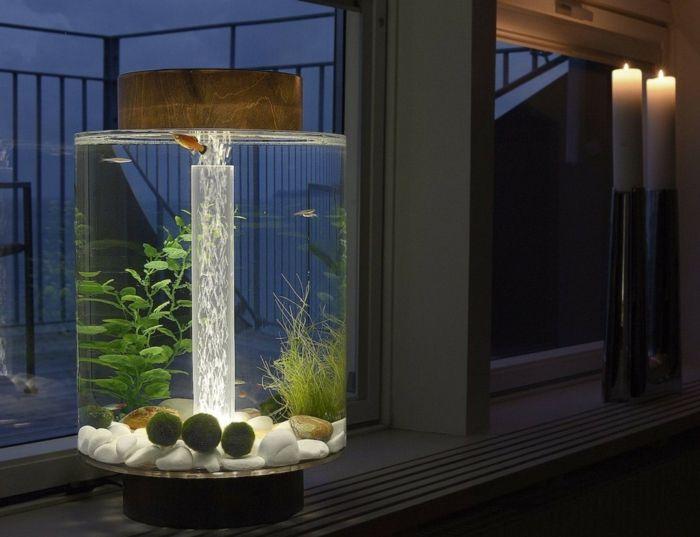 fisch aquarium selber einrichten und dekorieren fisch aquarien aquarium einrichten und aquarium. Black Bedroom Furniture Sets. Home Design Ideas