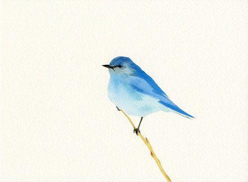 B L U E B I R D Tiny Bird Tattoos Watercolor Bird Bluebird Tattoo
