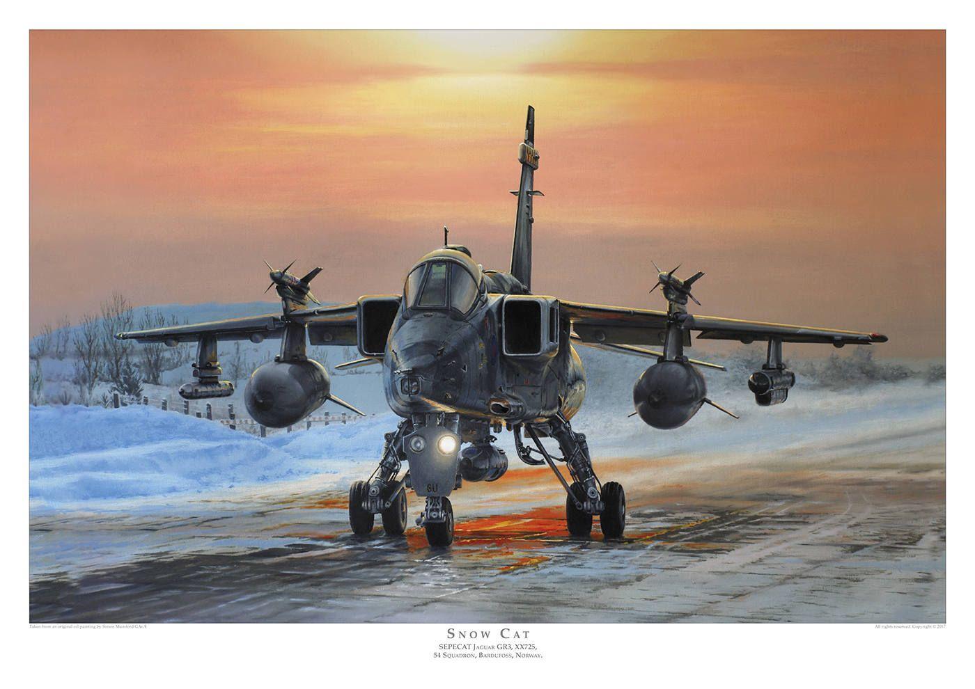 Aviation art print sepecat jaguar gr3 limited edition