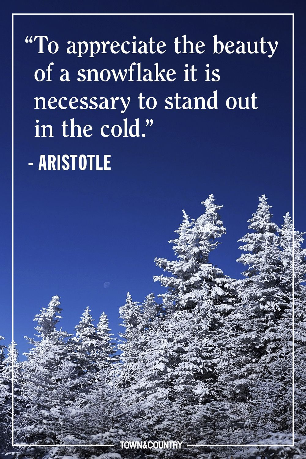 This Quote Sums Up All Of Our Feelings About Winter Winter