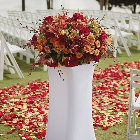 #wedding_ceremony A fusion of color and a whole lot of eye candy for your wedding.