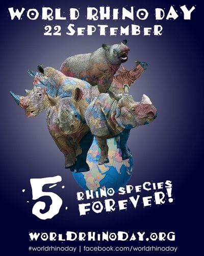 #5rhinospeciesforever!