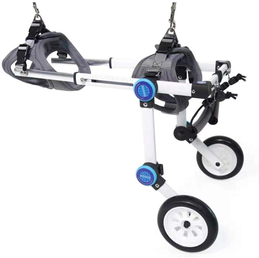 7 Best Dog Wheelchair Reviews Choose For Your Lovely Pet