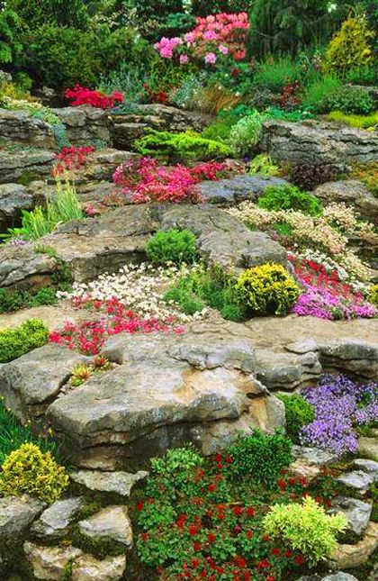 Reminds Me Of Leetes Islant, CT Chelsea FS Design: Peter Tinsley. Alpine  Rock Garden, Spring Flowering Alpine Perennials May, By John Glover.