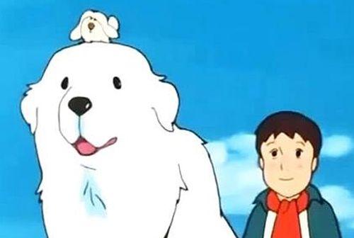 Belle e sébastien 名犬ジョリィ anime dog cartoon cane cartoon
