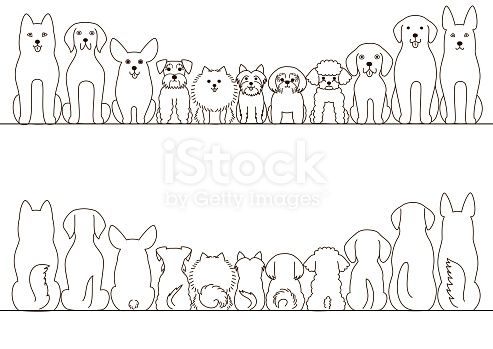 Photo of small and large dogs border set, front view and rear view, line art.