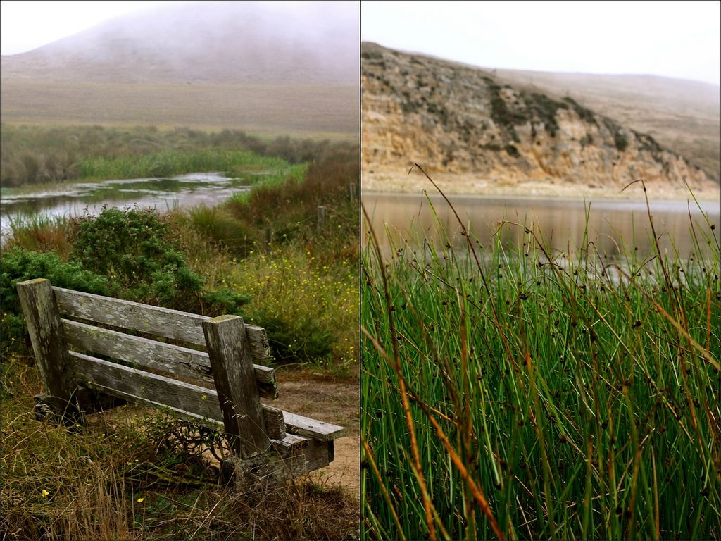 Point Reyes has more bounce to the ounce in Fall. Check out our guide to an indulgent Autumn getaway